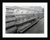 Delicatessen aisle, Woolworths store by English Photographer