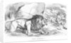 Fiat Justitia! The British Lion and the Afghan Wolves by John Tenniel