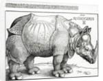 The Rhinoceros by Albrecht Dürer or Duerer