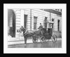 Single-Horsed Carriage by English Photographer