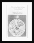 Construction of the cosmos by English School
