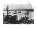 HMS Charybdis, HMS Satellite and HMS Cameleon at Esquimalt Royal Navy Dockyard, British Columbia, c.1880s by English Photographer