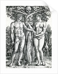 The Fall of Adam and Eve by Hans Sebald Beham