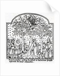Copy of illustration of the Oracular trees of the Sun and the Moon by French School