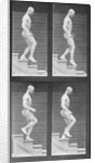 Man descending stairs by Eadweard Muybridge