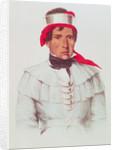 Chittee Yoholo, a Seminole Chief by American School