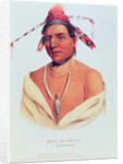 Portrait of Mar-Ko-Me-Te, A Menomene Brave by Charles Bird King
