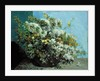 Flowering Branches and Flowers by Gustave Courbet