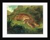 Tiger and Snake by Ferdinand Victor Eugene Delacroix
