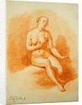 Female Nude by Adriaen van de Velde