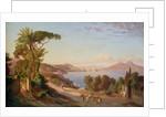 View of Naples by Carl Wilhelm Goetzloff
