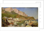 A Fishing Village at Capri by Louis Gurlitt