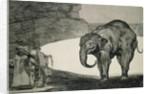 Folly of Beasts by Francisco Jose de Goya y Lucientes