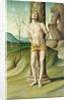 St. Sebastian by Marco Palmezzano