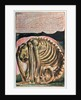 Book of Urizen; the creation of Urizen in material form by Los by William Blake