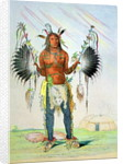 Mandan Medicine Man Mah-to-hah 'Old Bear' by George Catlin