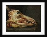 Skinned Head of a Young Bull by Felice Boselli
