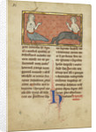 A Siren and a Centaur from a bestiary Ms Ludwig by Franco-Flemish School