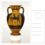 Chalcidian neck amphora with naked rider by Greek