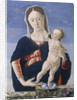 Madonna and Child by Marco Zoppo
