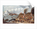Danish whaling station by Abraham Speeck