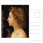 The Young Saint John the Baptist by Piero di Cosimo