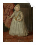 Portrait of a Boy, possibly Louis of Nassau, 1604 by Netherlandish School