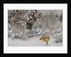Fox in Winter Landscape, 1938 by Bruno Andreas Liljefors