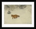 The Fox, 1893 by Bruno Andreas Liljefors