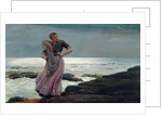 A Light on the Sea by Winslow Homer