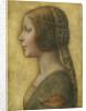 Profile of a Young Fiancee by Leonardo da Vinci