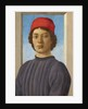 Portrait of a Youth by Filippino Lippi