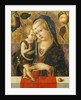 Madonna and Child by Carlo Crivelli