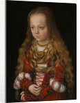 A Princess of Saxony by Lucas