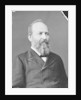 President James Garfield by American Photographer