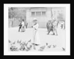 Feeding the pigeons, Boston Common by Anonymous