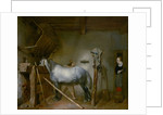Horse in a Stable by Gerard ter Borch or Terborch
