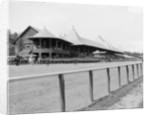 Saratoga Springs, N.Y., grand stand, race track by Detroit Publishing Co.
