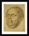 Posthumous Portrait, Martin Luther by Lucas Fortenagl