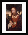 Young mother with child by Lucas