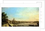 The Thames from the Terrace of Somerset House Looking Towards St. Paul's by Canaletto