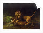 A Lion Attacking a Stag by George Stubbs
