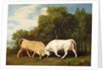 Bulls Fighting by George Stubbs