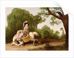 The Farmer's Wife and the Raven by George Stubbs