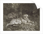 Two Tygers by George Stubbs