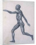 The Human Figure, lateral view by George Stubbs