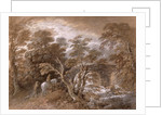 A Woodland Pool with Rocks and Plants by Thomas Gainsborough