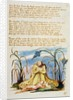 But he that Loves the Lowly... by William Blake
