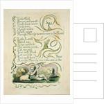 Spring by William Blake