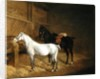 A Grey Pony and a Black Charger in a Stable by Jacques-Laurent Agasse